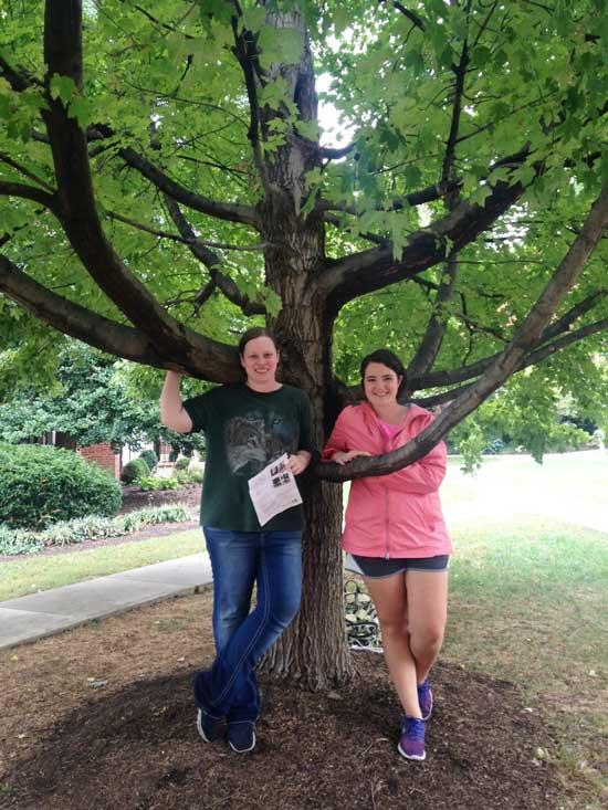 The favorite red maple of Cecelia and Misty on University of Kentucky Campus in September 2016