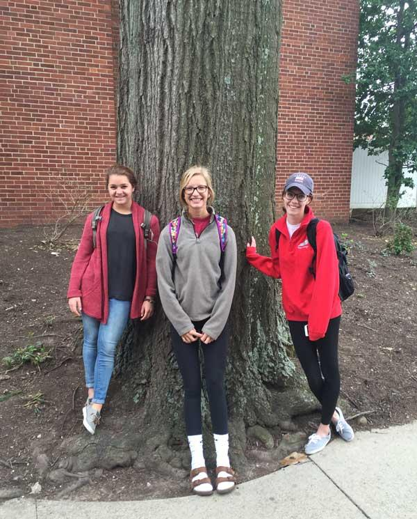 The favorite shumard oak of Hannah, Emma and Bailey in March 2016