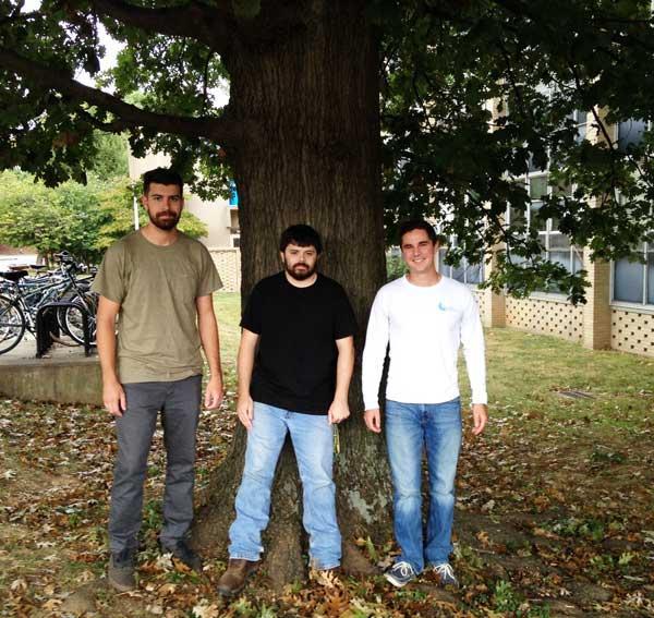 The favorite shumard oak of Quinn, Kyle and Brandon on University of Kentucky Campus in September 2016