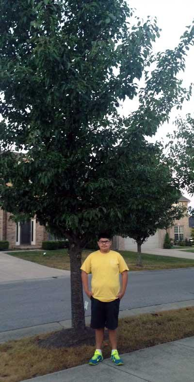 The favorite Cleveland pear of Sergio in Summer 2015